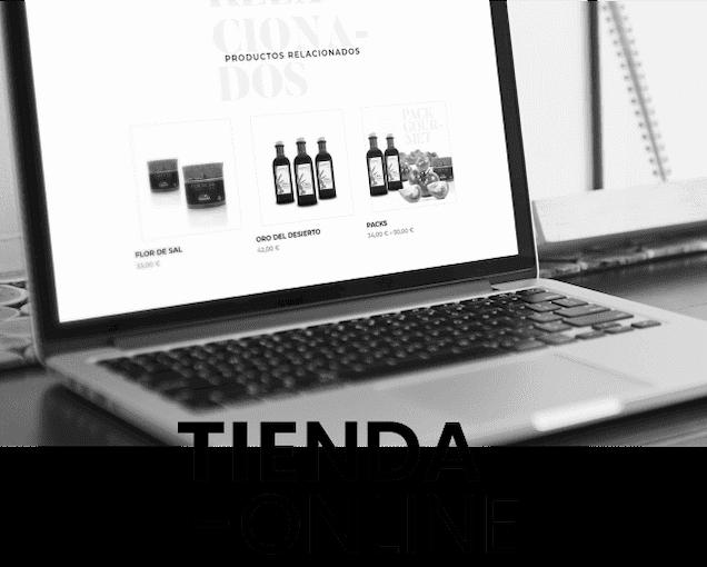 diseño de web de comercio electronico